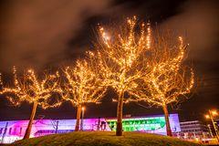 Lichterbäume (Automatikmodus)