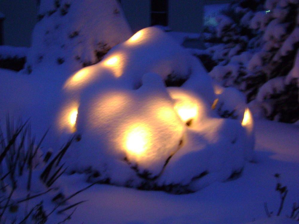Lichterbaum im Schnee