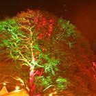 Lichterstadt Eutin#2