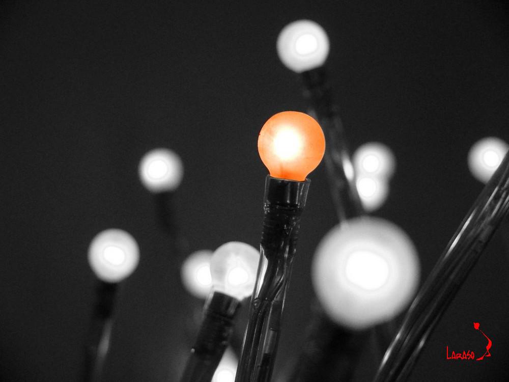Lichterstern Laraso
