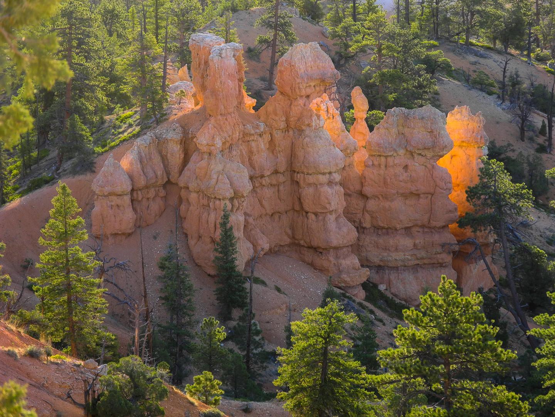 Lichtgefängnis im Bryce Canyon