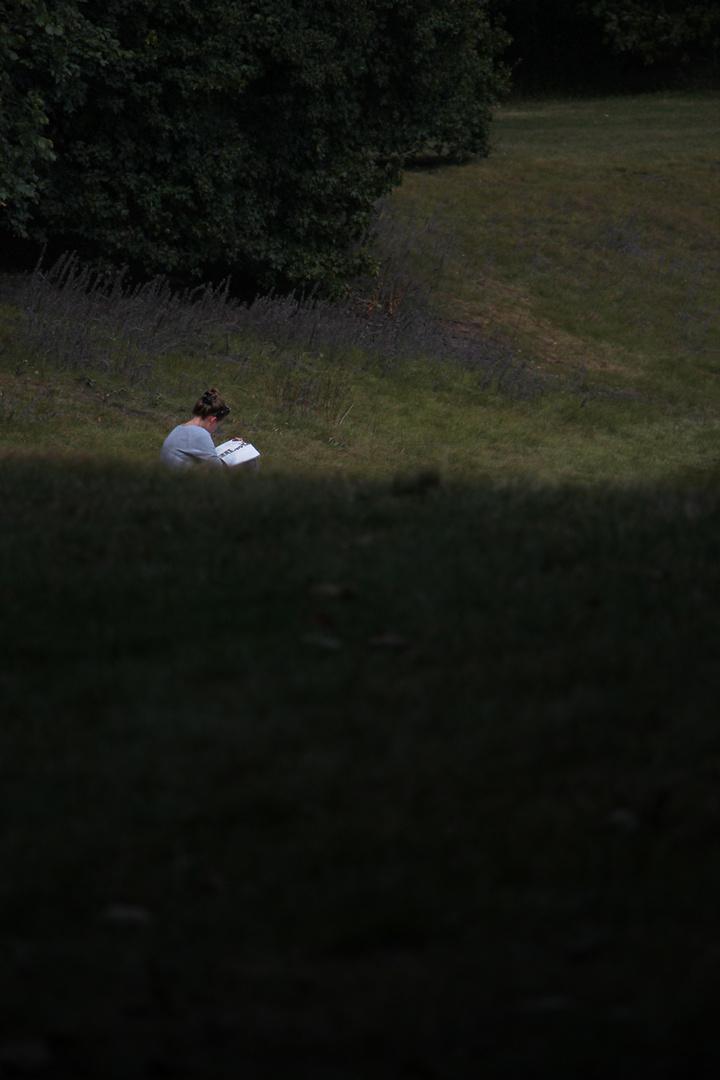 Licht&Schatten im Park