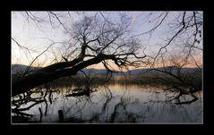 Lichtspiegelungen am Lacher-See