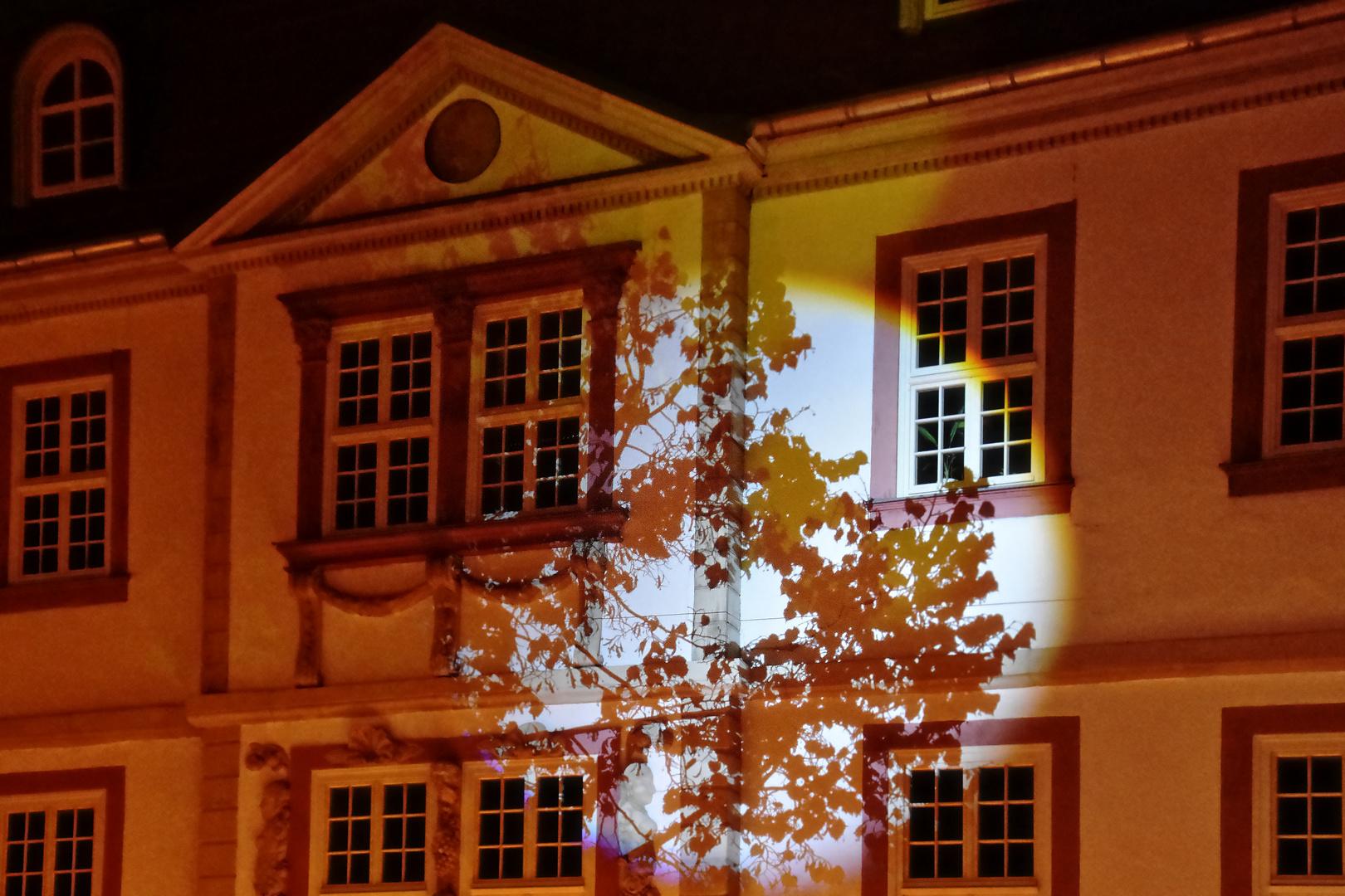 Lichtspiel In Heilbad Heiligenstadt