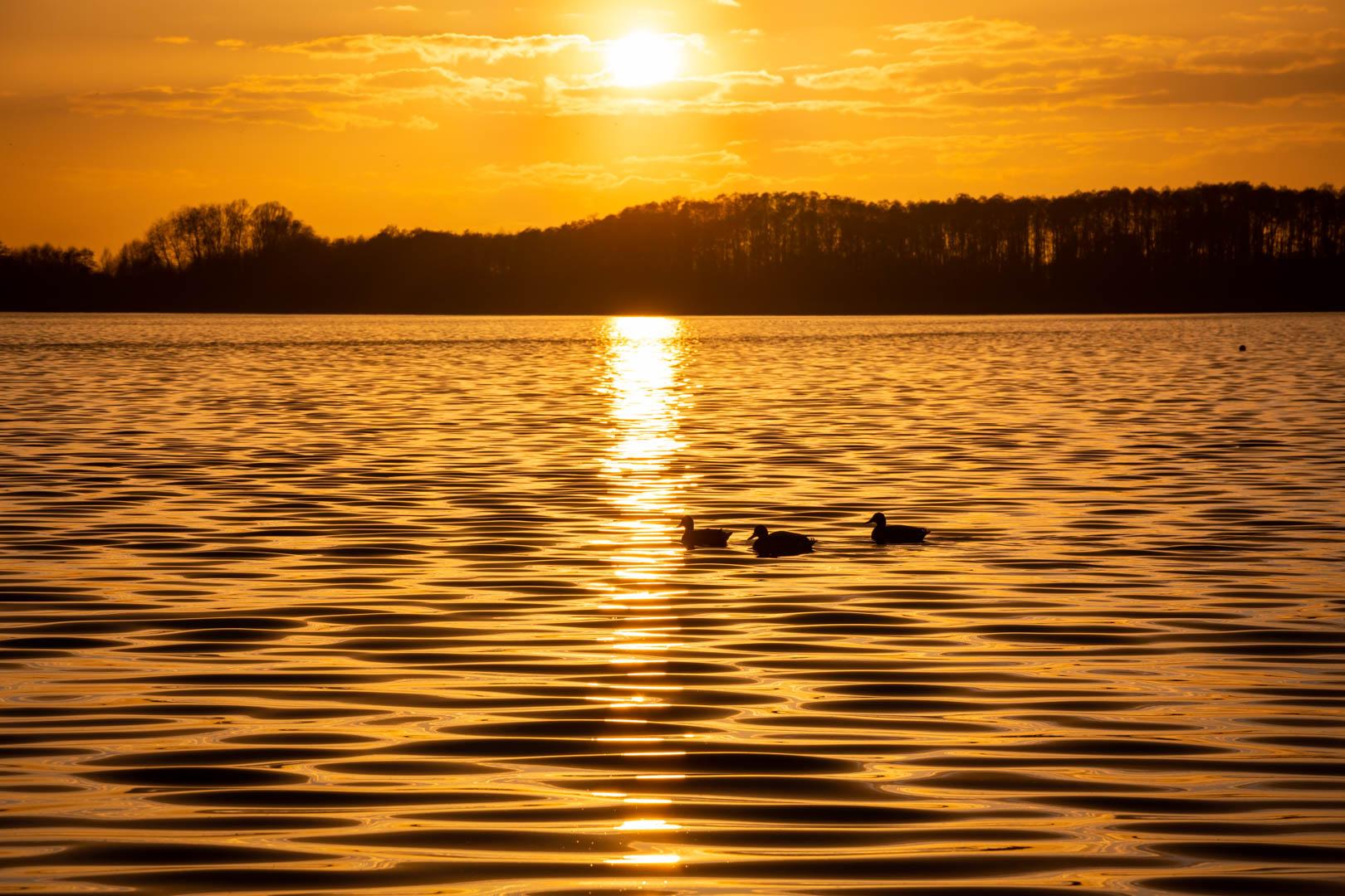 Lichtstimmung am Rangsdorfer See