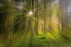 Licht(t)räume