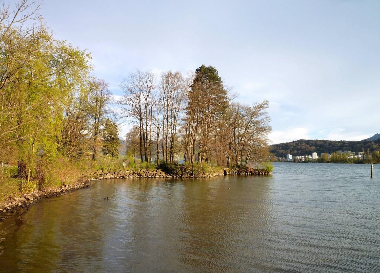 Lidowiese & Vierwaldstättersee ...