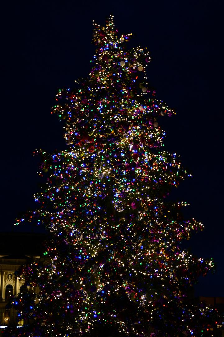 Liebe Community, wir wünschen schöne Weihnachten Foto & Bild ...
