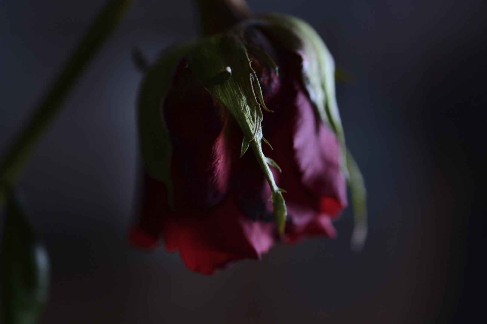 Liebe endet