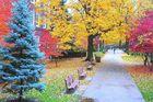 Liebe Herbst