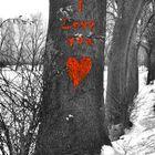 Liebe muss wachsen