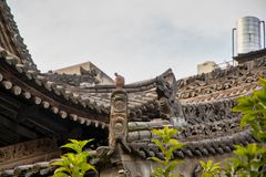 Lieber eine Ente in Peking als eine Taube in Xi'an?
