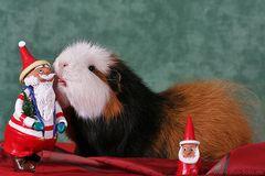 Lieber, guter Weihnachtsmann ...
