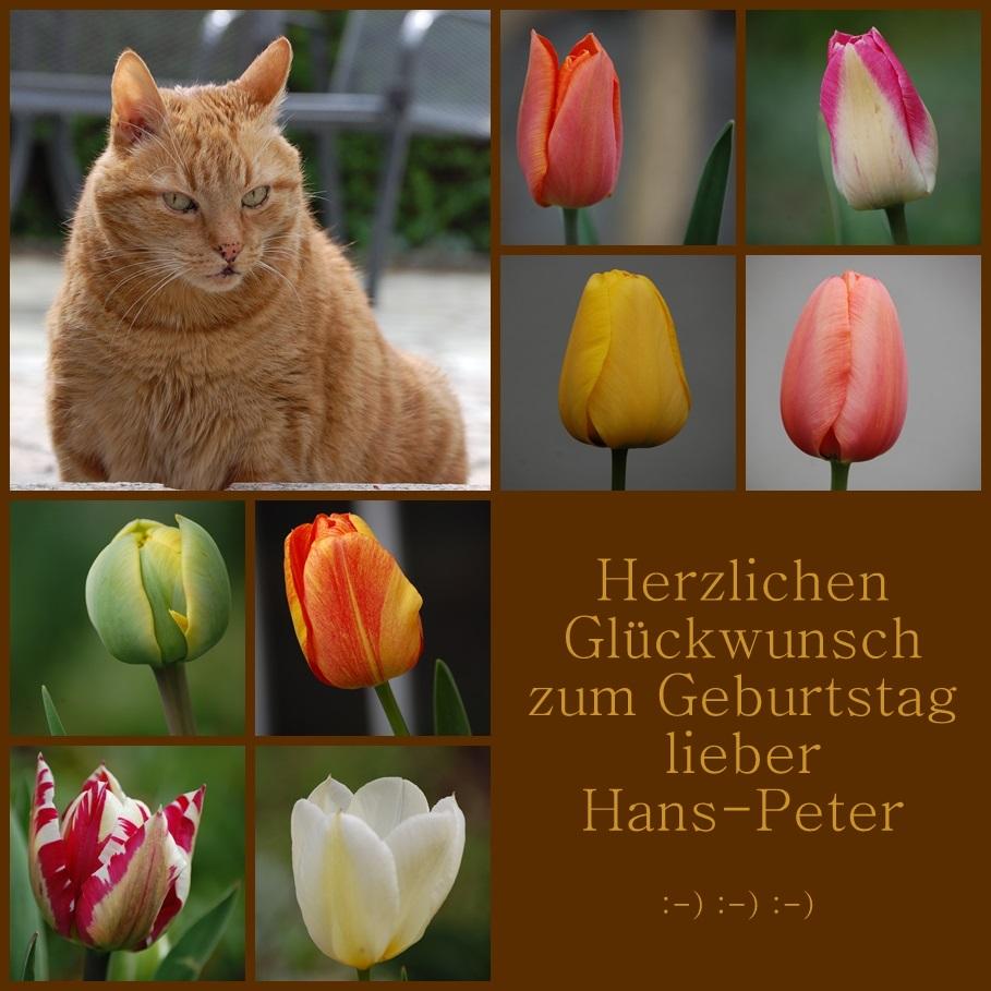 Lieber Hans-Peter,
