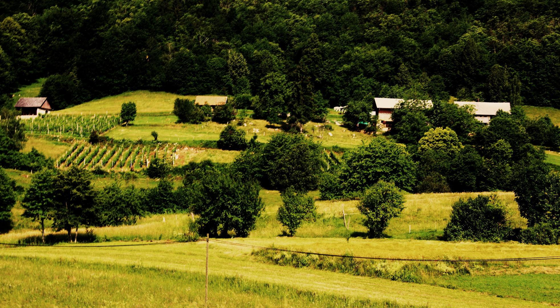 liebliche Landschaften in Slovenien 2