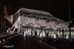 Liége - Bahnhof Giullemins - Seiteneingang bei Nacht