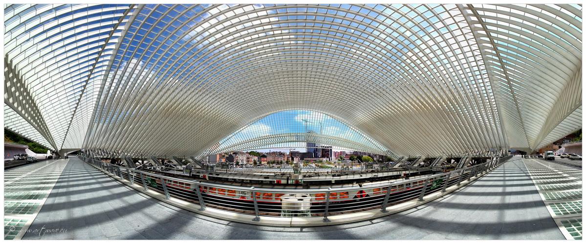 Liège-Guillemins # Railway Station