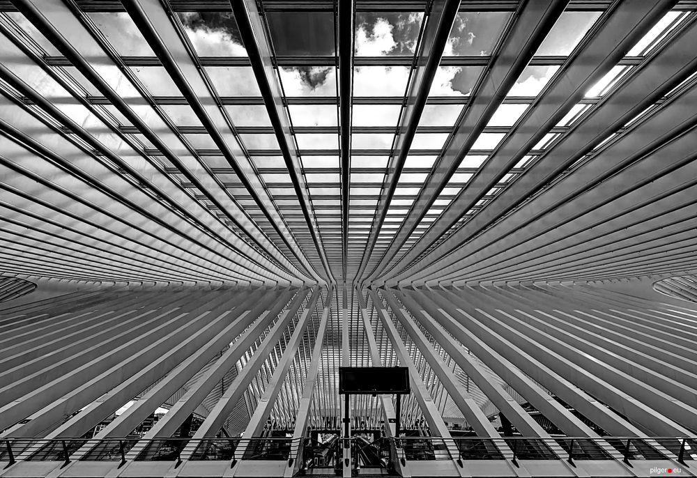 Liège-Guillemins - Symmetrie