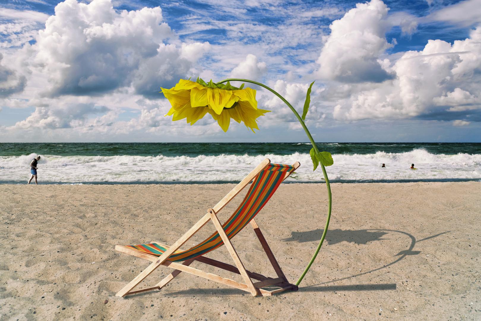 Liegestuhl mit sonnenschirm strand  Liegestuhl und Sonnenblumenschirm am Strand Foto & Bild ...