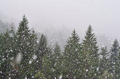 Liegt Schnee am Gländer...