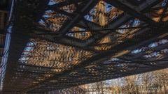 Liesenbrücken 4 (Pol 3D)