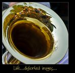 Life...distorted images...