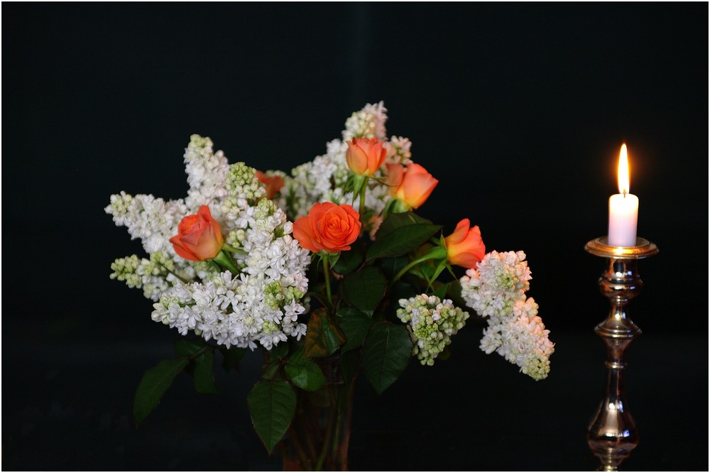 : Light and Flowers
