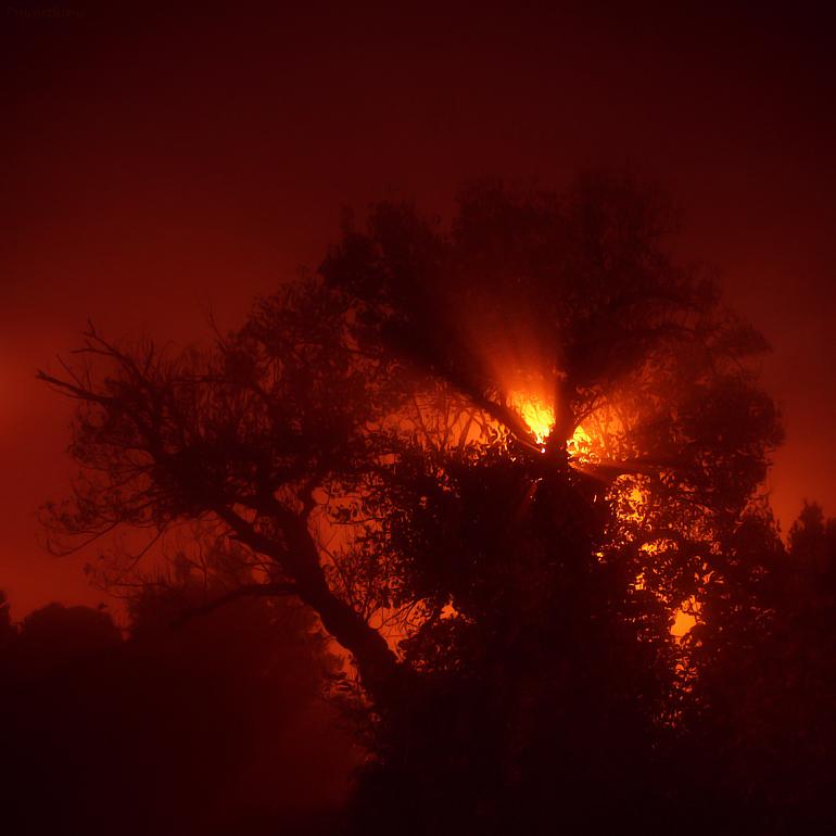 Light, Fog and Fire