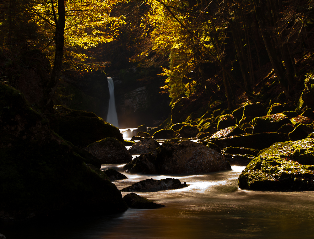 light-of-nature
