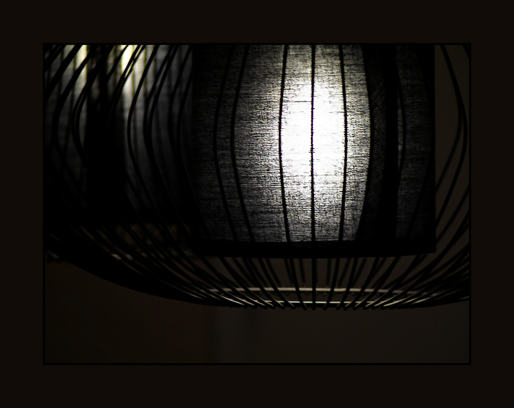 Light with double black shade