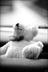 Lighten Bear°