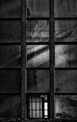 light.painting.windows