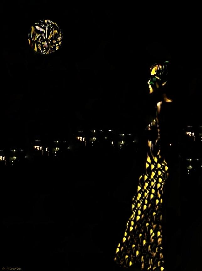 Lights of a night