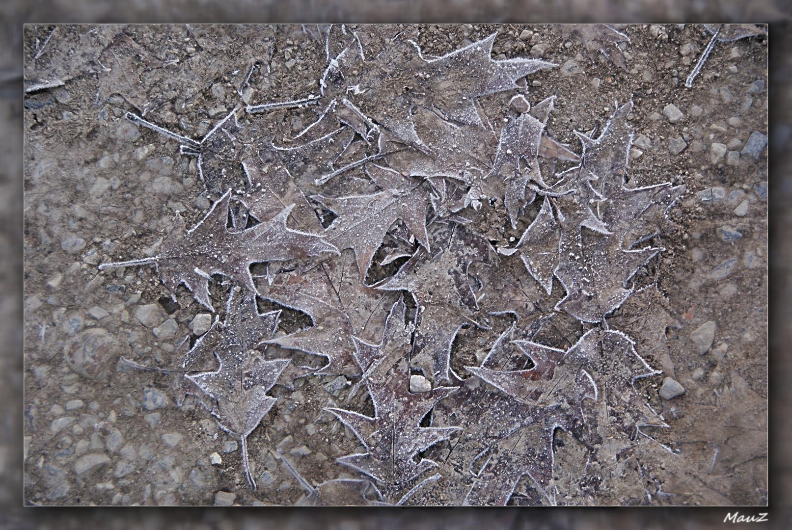 ... Like dead leaves....