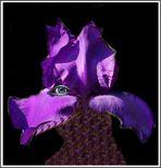 Lilienwolf