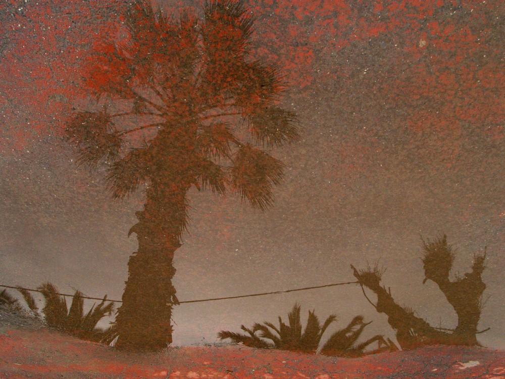 ...l'illusione di un cielo rosso pieno di stelle