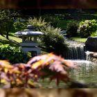 LIMBOURG - Hasselt (jardin japonais)