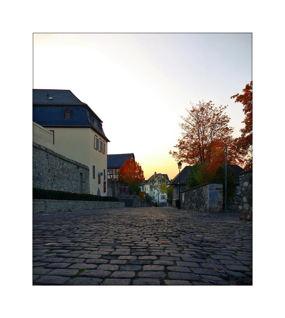 Limburg's...