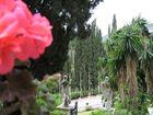 ...L'incantevole isola di Corfù...