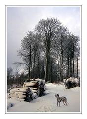 Linda im Schnee