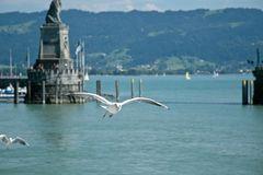 Lindau Hafen - Einflug 2