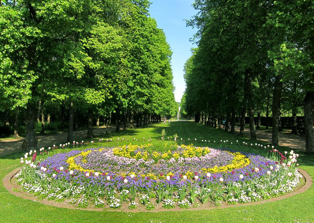 Lindenallee Hofgarten Ansbach