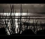 """""""L'indissolubile fascino del mare"""""""