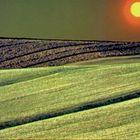 linee colore e natura