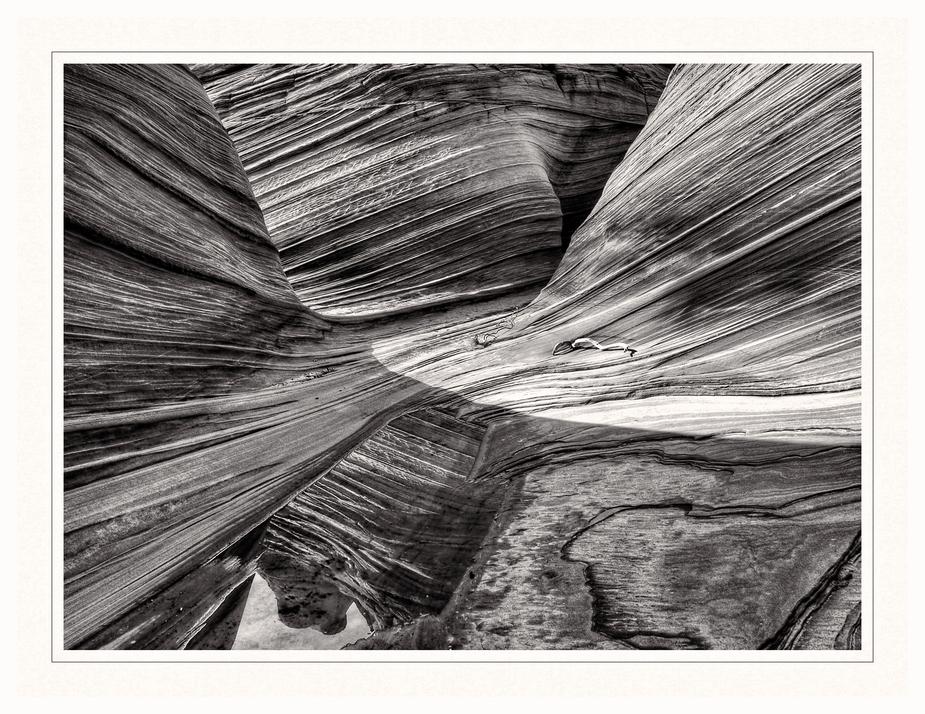 ~~~ lines ~~~