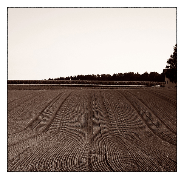 [lines...]