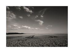 lines to horizon