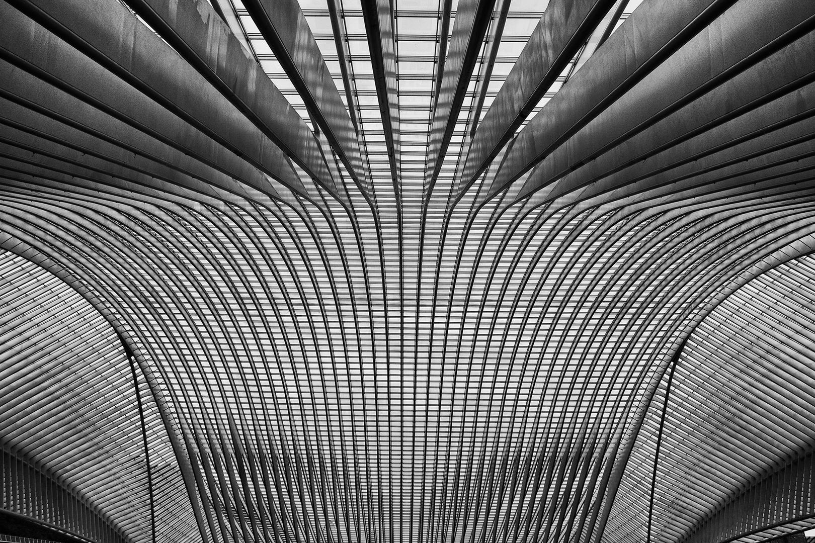 Linien + Licht
