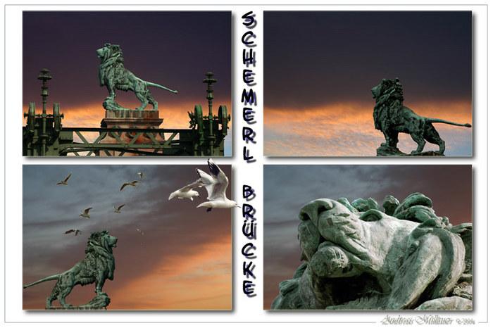 Lion King Impression