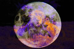Lion Love over the Moon - DigiArt
